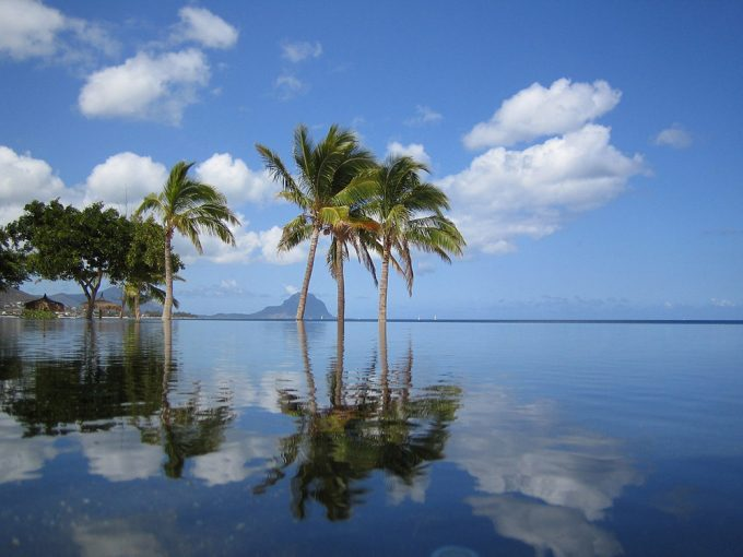 Mauritius pool and palm tree relfletions - shuttle to and from your hotel